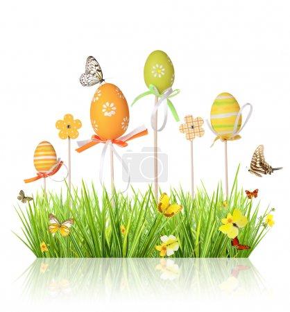 Photo pour Pâques oeufs en herbe, isolé sur fond blanc de couleur - image libre de droit