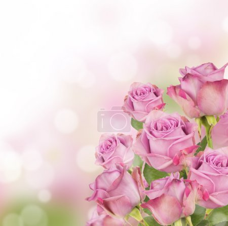 Pink roses bouquet with free space for text...