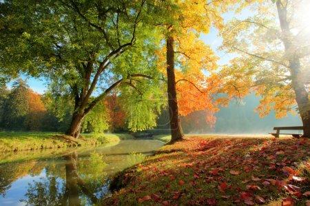 Photo pour Vue sur le parc rural d'automne dans une belle humeur de couleur - image libre de droit