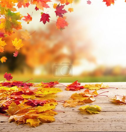 Photo for Colored autumn leaves on wooden planks - Royalty Free Image