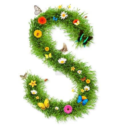 "Spring letter ""S"""