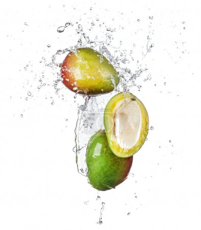 Photo for Pieces of mango in water splash, isolated on white background - Royalty Free Image