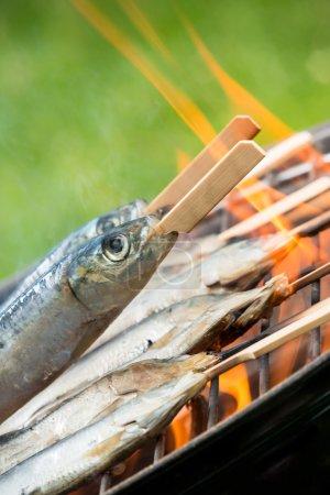 Sardins on grill