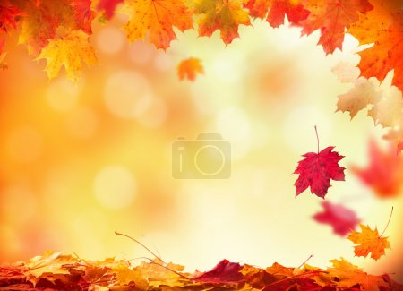 Photo for Autumn falling leaves with blur background - Royalty Free Image