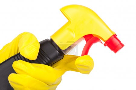 Hands in rubber gloves holding cleaning spray
