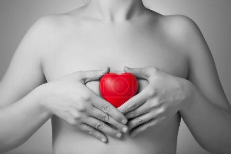 Photo pour Femme tenant une forme de coeur rouge - image libre de droit