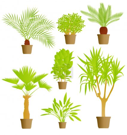 Illustration for House plants vector background set - Royalty Free Image
