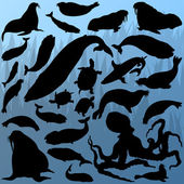 Big whale octopus seal sea lion turtle and shark silhouettes