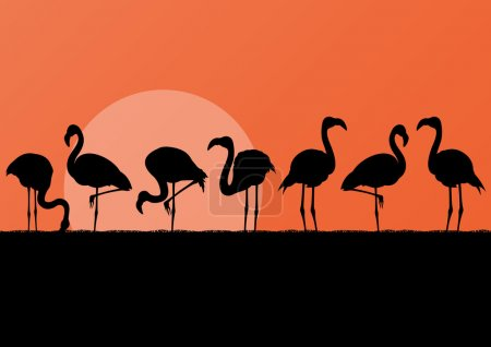 Flamingo silhuettes in sunset landscape illustration background