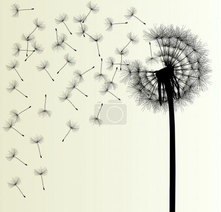 Illustration for Blow Dandelion vector background for poster - Royalty Free Image