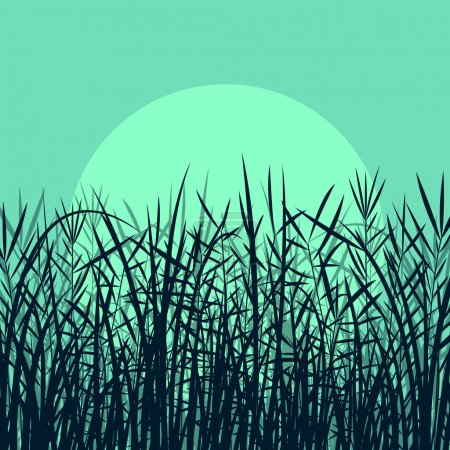 Illustration for Grass, reed and wild plants detailed silhouettes illustration background vector in moonlight - Royalty Free Image