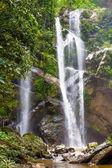 Vodopád v park forest
