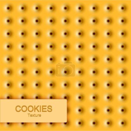 Vector modern cookie texture. Food background.
