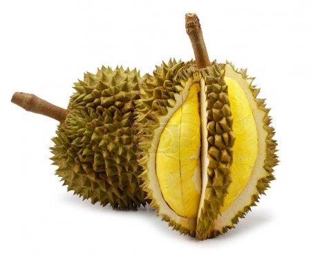 Photo pour Durian isolé sur fond blanc - image libre de droit