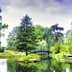 Bridge in the Japanese garden