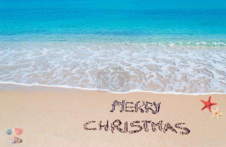 Merry sandy Christmas