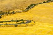 Crete senesi, charakteristické krajiny v údolí val dorcia