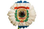 Gerbera sedmikrásky květin v barvách vlajky amerického státu západní vi
