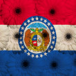 Stylized flag of us state of missouri with gerbera...
