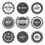 Set of retro vintage badges and labels.eps10...