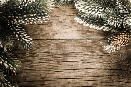 Frame from branch of fir tree