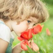 tulip odeur d'enfant