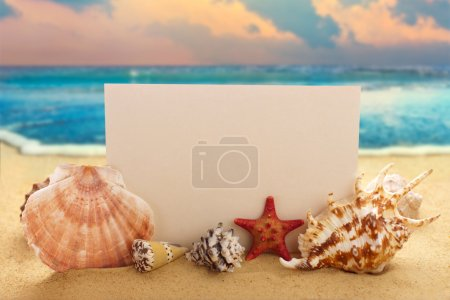 Photo for Blank paper with seashells and starfish on the sandy beach at ocean background - Royalty Free Image