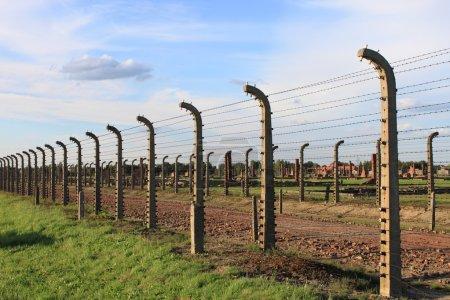 Barbed wire electrical fence at Auschwitz Birkenau...