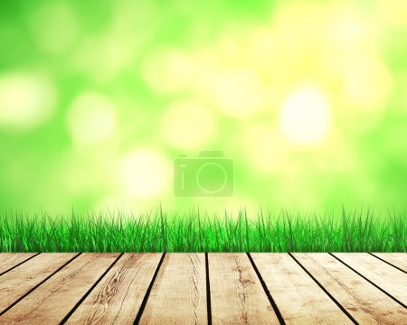Photo for Beautiful nature background with green grass and sunlight - Royalty Free Image