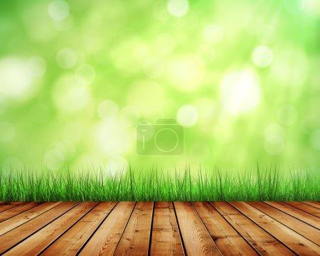 Photo pour Fond de la belle nature avec l'herbe verte et le soleil - image libre de droit