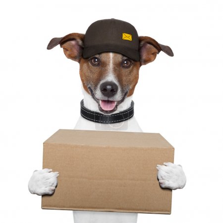 Photo for Dog delivery post box - Royalty Free Image