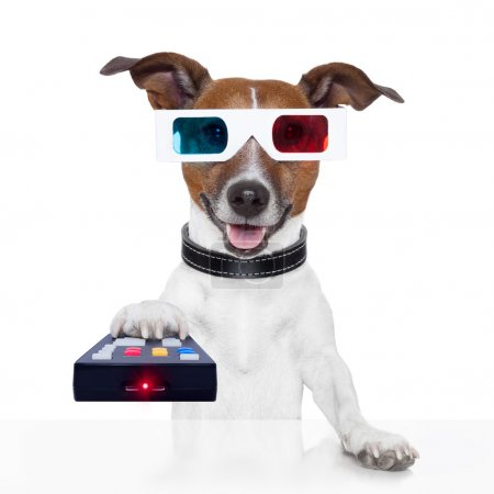 Remote control 3d glasses tv movie dog