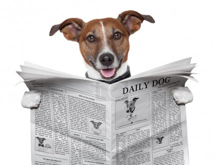 Photo for Dog reading and holding a newspaper - Royalty Free Image