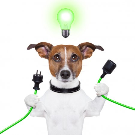 Photo for Green energy dog with a cable and a light bulb - Royalty Free Image
