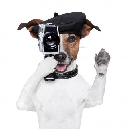 Foto de Perro de director de la película con una cámara vintage - Imagen libre de derechos