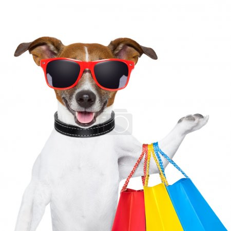 Photo for Funny dog with shopping bags and glasses - Royalty Free Image