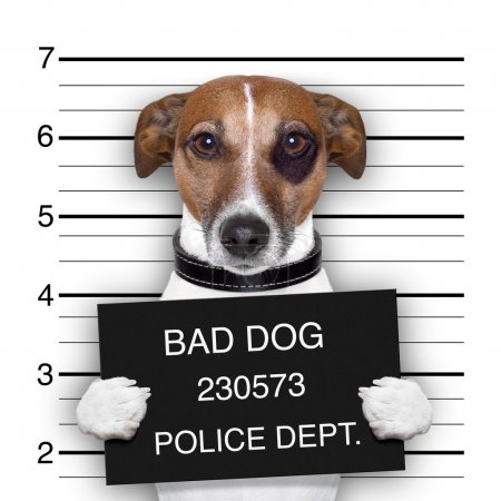Mugshot of wanted dog holding a banner...