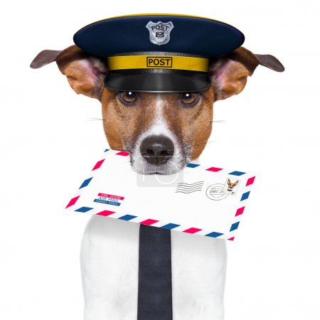 Photo for Postman mail dog with a air mail letter - Royalty Free Image