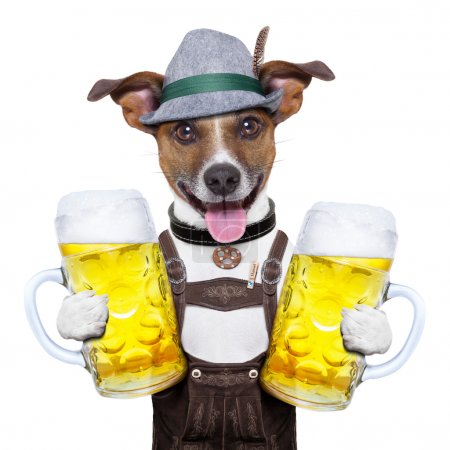 Photo for Oktoberfest dog with two beer mugs ,smiling happy - Royalty Free Image