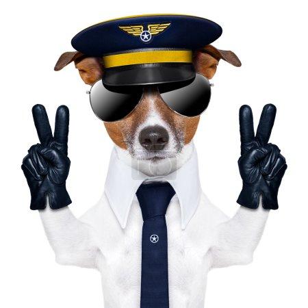 Photo pour Pilote capitaine chien avec des doigts de paix et une cravate bleue - image libre de droit