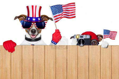 Photo for Two dogs watching 4th of July parade - Royalty Free Image