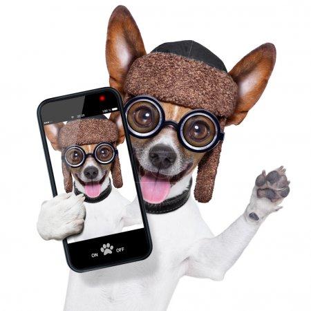 Photo pour Chien idiot fou avec des lunettes drôles montrant langue prenant selfie - image libre de droit