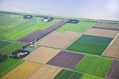 Farma krajina s větrným mlýnem shora, Nizozemsko
