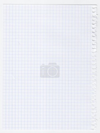 Squared sheet of paper, isolated on white