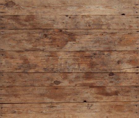 bark wood pattern