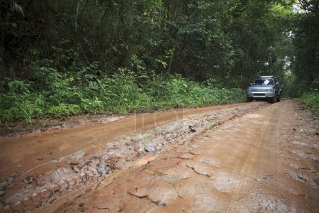 Car in nature track off road in rain forest wilderness