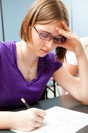 Standardized Testing in Education