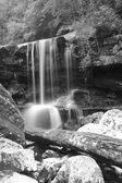 Big water fall in deep forest (Monochrome)
