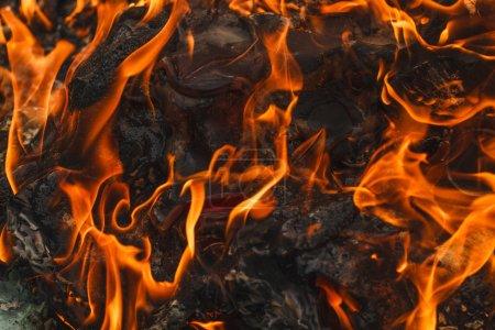 Photo pour Ordures brûler en gros plan - image libre de droit
