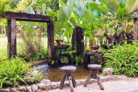 Small pond and garden